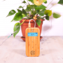 BAMBOO BASIC – Portable device